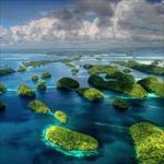 تحقیق-پیرامون-نظریه-آغاز-حیات-در-دریا-و-انتقال-آن-به-خشکی