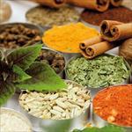 تحقیق-گیاهان-دارویی