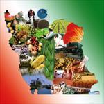 پایان-نامه-نقش-و-تاثیر-توسعه-كشاورزی-بر-پیشرفت-صنعتی