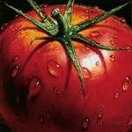پاورپوینت-خط-تولید-رب-گوجه