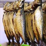 پاورپوینت-فرایند-تولید-ماهی-دودی-و-ماهی-شور