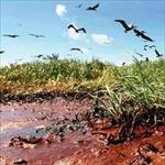 تحقیق-معرفی-آلودگی-های-صنعت-پالایش-نفت-و-اقدامات-کنترلی