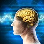 پاورپوینت-اهمیت-و-ضرورت-برخورد-نوروپسیکولوژیک-با-مسئله