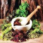 پاورپوینت-رابطه-انسان-با-گیاهان-دارویی