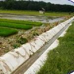 بررسی-افزایش-راندمان-آب-دهی-و-جلوگیری-از-اتلاف-آب-در-کانالهای-بتنی