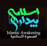 نقش-انقلاب-اسلامی-به-رهبری-امام-خامنه-ای-در-حرکتهای-ضد-استکباری-(بیداری-اسلامی)-در-منطقه