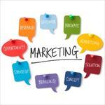 بررسی-بازاریابی-شرکت-پگاه-پروشات