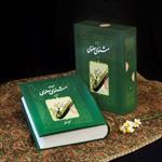 بررسی-شخصیت-شناسی-داستانی-مثنوی-مولانا