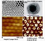 تهیه-کامپوزیت-پلی-آنیلین-کربنات-کلسیم-و-بررسی-اثر-ضد-خوردگی-پوششی-از-آن-بر-روی-آهن