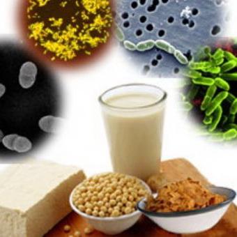 غذاهای عملگرا- مطالعه موردی غذاهای پروبیوتیک لبنی و غیر لبنی