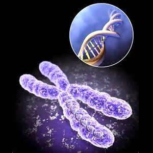 تحقیق بیماری های ژنیتیکی
