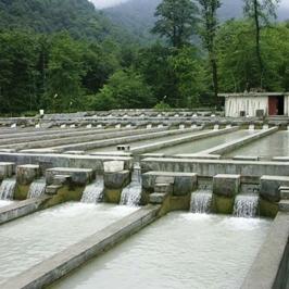 پروژه طراحي و ساخت مزارع آبي (پرورش ماهی)