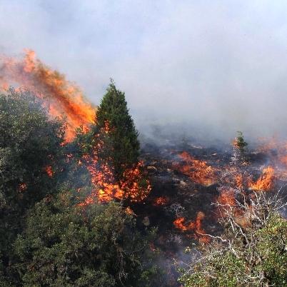 ترجمه مقاله لاتین با عنوان نقش آتش سوزی در وقوع زمین لغزش