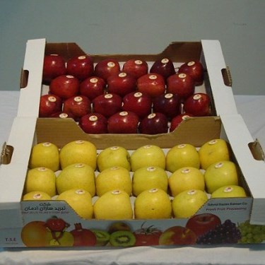 پروژه کارآفرینی بسته بندی میوه
