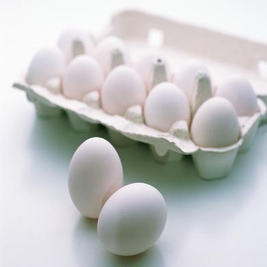 پروژه کارآفرینی بسته بندی و توزیع تخم مرغ