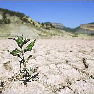 پیش بینی خشکسالی با استفاده از روش های آماری و سری های زمانی در هرمزگان با تاکید بر رودخانه میناب