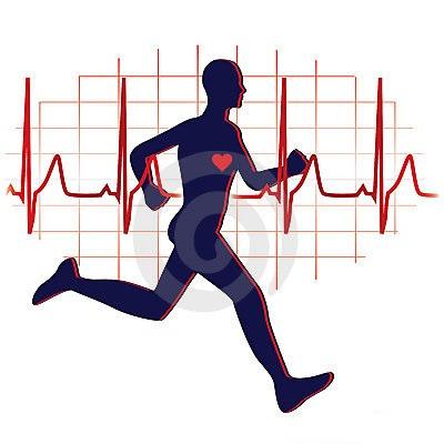 رابطه ورزش با اندامهاي داخلي بدن و بهداشت و عوامل تهديد كننده قلبي- عروقي