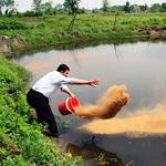 طرح تکثیر و پرورش آبزیان