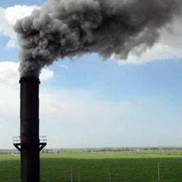 پایان نامه  آلودگی هوا و اثرات آلاينده ها بر روي پروسه هاي بيوشيميائي و فیزیولوژیکی
