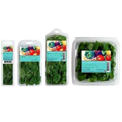طرح تولید و بسته بندی حبوبات و سبزیجات نیم پز