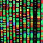 مقاله-معرفی-علم-ژنتیک